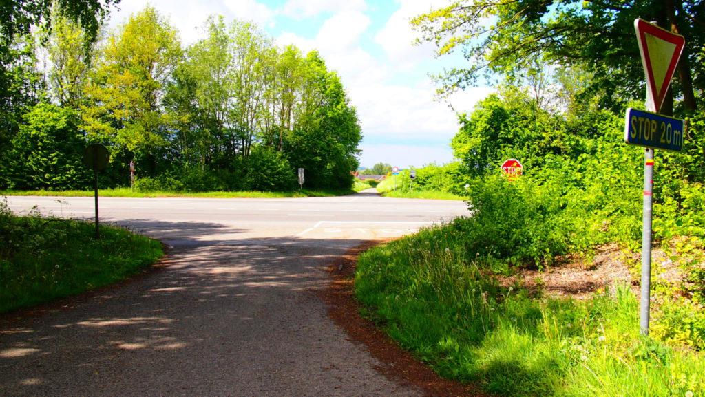Attention, cette grande route est très dangereuse à traverser. Ne faites pas n'importes quoi, soyez responsable et prudent.